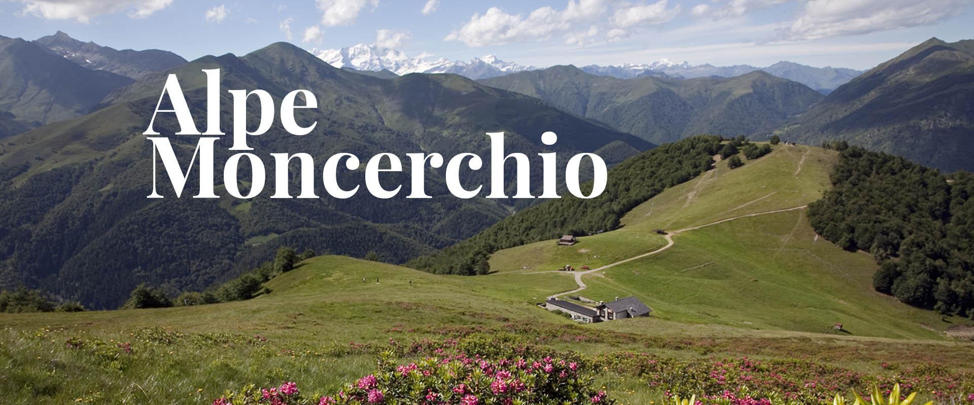 1-alpemoncerchio-home